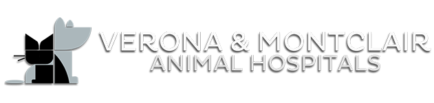 Verona and Montclair Animal Hospitals
